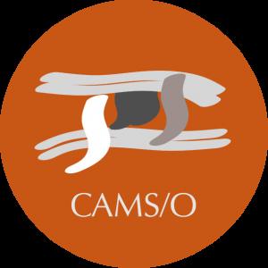 logo_cams_rond_web